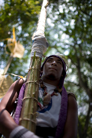 "A ""Palmero"" carries palm fronds cut from Barlovento to be used in Palm Sunday services as part of Holy Week celebrations in Caracas, Saturday, March 27, 2010.  Since 1770 ""Los Palmeros"" have cut the palm fronds that the Catholic church uses during Holy Week. (AP Photo/Ariana Cubillos)"