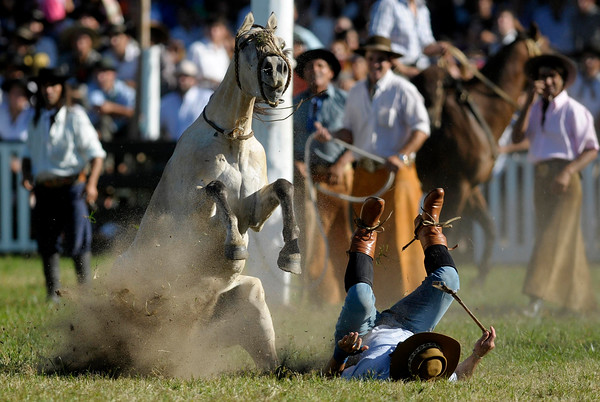 An Uruguayan gaucho, or cowboy, falls from his horse during a rodeo in Montevideo, Sunday, March 28, 2010. Every year, during Holy Week, hundreds of gauchos show their skills and compete for the title of best rider of the rodeo. (AP Photo/Matilde Campodonico)