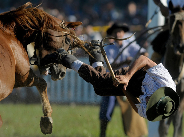 An Uruguayan gaucho, or cowboy, falls from a horse during a rodeo in Montevideo, Sunday, March 28, 2010. Every year, during Holy Week, hundreds of gauchos show their skills and compete for the title of best rider of the rodeo. (AP Photo/Matilde Campodonico)