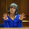 ABEYTA04<br /> During Joseph Abeyta's murder trial on Wednesday, Boulder resident Jan Kelly describes the taillights on the car that she spotted driving west on Sumac Avenue on January 23, 2009.<br /> <br /> Photo by Marty Caivano/Camera/Oct. 14, 2009