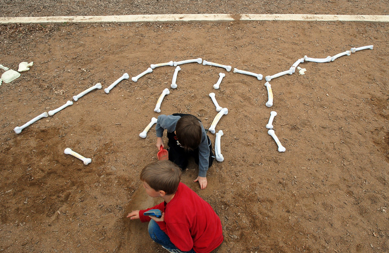 Kindergartners Colt Coffman, front, and Jake Brisnehan search for more plastic dinosaur bones during Kohl Elementary School's Friday afternoon K-CARE program.<br /> November 13, 2009<br /> Staff photo/David R. Jennings