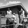 Construction workers building a house in Broomfield in the late 1950's.<br /> <br /> courtesy of the Depot Hill Museum