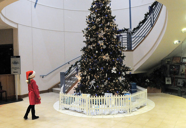 Katie Ziegler, 8,looks at the holiday tree to ply her violin with the Suzuki Violin Students during the tree lighting ceremony at the George Di Ciero City and County Building on Friday.<br /> <br /> December 2, 2011<br /> staff photo/ David R. Jennings