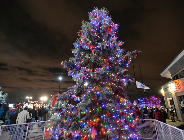The Mayor's Tree is lit during the ceremony at the George Di Ciero City and County Building on Friday.<br /> <br /> December 7, 2012<br /> staff photo/ David R. Jennings