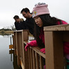Anna Huffer, 9, looks over the edge of the dock on a pond on the Metzger Farm Open Space on Saturday.<br /> November 10, 2012<br /> staff photo/ David R. Jennings