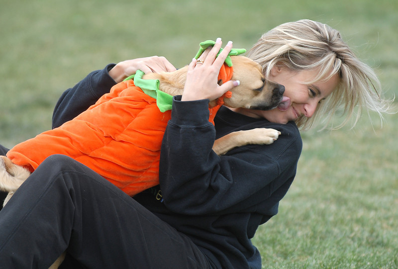Jessica Maestas is greeted with licks from her dog Lily, dressed as a pumpkin, during Mtn. View Elementary School's 30th anniversary celebration and fall festival on Saturday.<br /> October 9, 2010<br /> staff photo/David R. Jennings