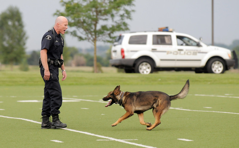 Broomfield Police Officer Adrian Peech orders his K-9, Xan, back to him during a K-9 demonstration for National Night Out at the Broomfield County Commons on Tuesday.<br /> <br /> August 2, 2011<br /> staff photo/ David R. Jennings