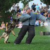 Broomfield Police officer Adrian Peech fires a blank weapon while acting as the criminal being subdued by  police dog Aron during National Night Out at County Commons Park on Tuesday.<br /> <br /> <br /> August 4, 2009<br /> staff photo/David R. Jennings