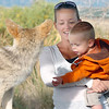 Jennifer Duckett and her son Eli, 2, look at a mounted coyote during the Broomfield Nature Program at Josh's Pond on Wednesday.<br /> October 5, 2011<br /> staff photo/ David R. Jennings