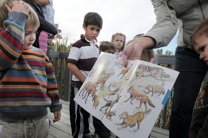 Volunteer Karen Steele shows Henry Thompson, 4, left, with other preschoolers pictures of coyotes and other species during the Nature Walk around Josh's Pond on Wednesday.<br /> October 5, 2011<br /> staff photo/ David R. Jennings