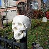A plastic skull decorates the fence at 4335 Lexi Circle, on Thursday, for Halloween.<br /> <br /> October 22, 2009<br /> Staff photo/David R. Jennings