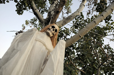 """A skeleton hung in a tree at the entrance to Jim O'Dell's Halloween  haunted house dubbed """" The Chilling Hour""""  at 920 Coral St. on Wednesday.   October 19, 2011 staff photo/ David R. Jennings"""
