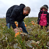 Adam George, left, cuts the vine from a pumpkin with his daughter McKenna, 6, in a field at the Rock Creek Farm on Saturday.<br /> October 6, 2012<br /> staff photo/ David R. Jennings