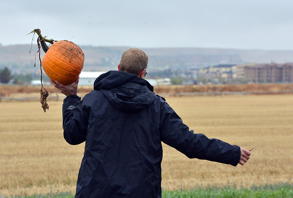 Adam George carries a pumpkin from a field at the Rock Creek Farm on Saturday.<br /> October 6, 2012<br /> staff photo/ David R. Jennings