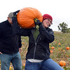 Darcie Eddy carries a pumpkin from a field with her friend Josh Ramsey at the Rock Creek Farm on Saturday.<br /> October 6, 2012<br /> staff photo/ David R. Jennings