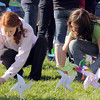 Aspen Creek K-8 eighth graders Taylor Lindquist, left, and Madi Clements plant pinwheels they made for the Pinwheels for Peace project on Wednesday at the school. Students from all grades planted pinwheels making the shape of peace signs.<br /> September 21, 2011<br /> staff photo/ David R. Jennings