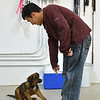 Pete Ko gives a sit command to his dog Dash during puppy socialization class at Rocky Mountain Dog Training on Saturday.<br /> November 10, 2012<br /> staff photo/ David R. Jennings