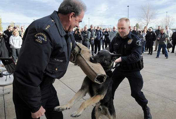 "Retiring Broomfield Police officer Jason Collins, right, allows his K-9 dog Nik take a ""last bite"" on the arm of Chief Tom Deland wearing a bite sleeve during the retirement ceremony for Collins and Nik in front of police headquarters on Wednesday.<br /> <br /> December 1, 2010<br /> staff photo/David R. Jennings"