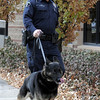 Broomfield Police officer Jason Collins and his K-9 dog Nik walk to the retirement ceremony of Collins and Nik from the department in front of  police headquarters on Wednesday.<br /> <br /> December 1, 2010<br /> staff photo/David R. Jennings