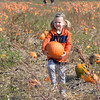 bent1017pumpkins02