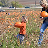 bent1017pumpkins10