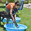 Alvina Vaasquez helps her greyhound, Cameo into  a pool to get washed during the Salon Tao's dog wash to benefit local dogs on Saturday.<br /> <br /> July 21, 2012<br /> staff photo/ David R. Jennings