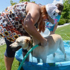 Michal Rath, left, rinses off Abbey owned by Steve Rath during the Salon Tao's dog wash to benefit local dogs on Saturday.<br /> July 21, 2012<br /> staff photo/ David R. Jennings