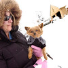 "SNOW73.JPG <br /> Melissa Dakis takes Gizmo out for a ""walk"" on Thursday morning in Boulder. Dakis says her 13-year-old miniture Yorkshire Terrier doesn't like the cold weather and snow.<br /> Photo by Paul Aiken The Camera Oct 29 2009"