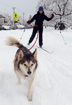 Fria the dog pulls owner Sarah Orobona as she skis in North Boulder Park on Thursday.<br /> Cliff Grassmick / October 29, 2009