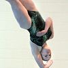 Niwot's Ariel Mosier performs a dive at the 4A state swimming championships on Saturday at the Veterans Memorial Aquatics Center in Thornton.<br /> February 11, 2012<br /> staff photo/ David R. Jennings