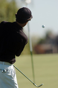 Silver Creek's Dylan Wonnacott chips onto the 1st green during the state 4A golf tournament at Pelican Lakes Golf course in Windsor on Tuesday. October 4, 2011 staff photo/ David R. Jennings