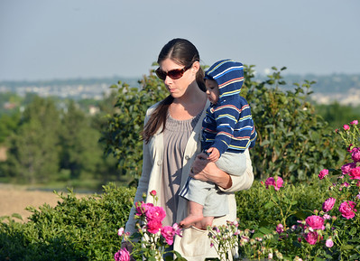 Shauna Huber walks in the rose garden with her 11 month-old son Tabor during the concert by the Carbone Family Band for Summer Sundays at the Historic Brunner Farmhouse on Sunday June 9, 2012  staff photo/ David R. Jennings