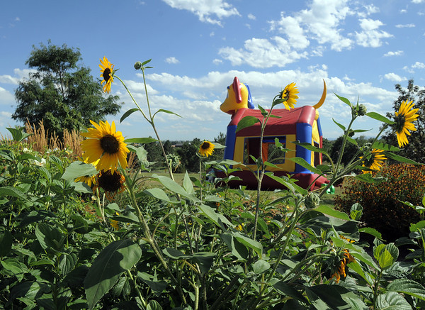 The bouncy castle near the flower gardens at the Summer Sundays at the Brunner Farmhouse sponsored by the Broomfield Council on the Arts and Humanities on Sunday.<br /> <br /> August 7, 2011<br /> staff photo/ David R. Jennings