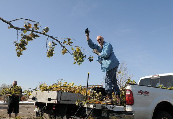 Jack Holt tosses a branch onto the pile of broken tree limbs at the special drop-off center in the parking lot of the Bay Aquatic Park, 250 Lamar St. on Friday. The special drop-off center is open from 7 a.m. to 5 p.m. daily through November 6.<br /> October 28, 2011<br /> staff photo/ David R. Jennings