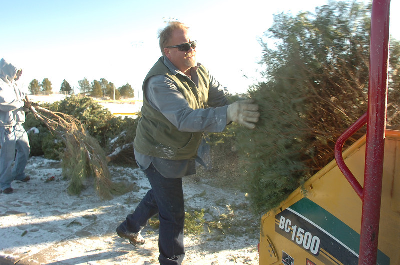 Chuck Gehringer, Broomfield Parks,  puts a Christmas tree into the wood chipper at the tree collection site in Community Park on Thursday.<br /> January 12, 2012<br /> staff photo/ David R. Jennings