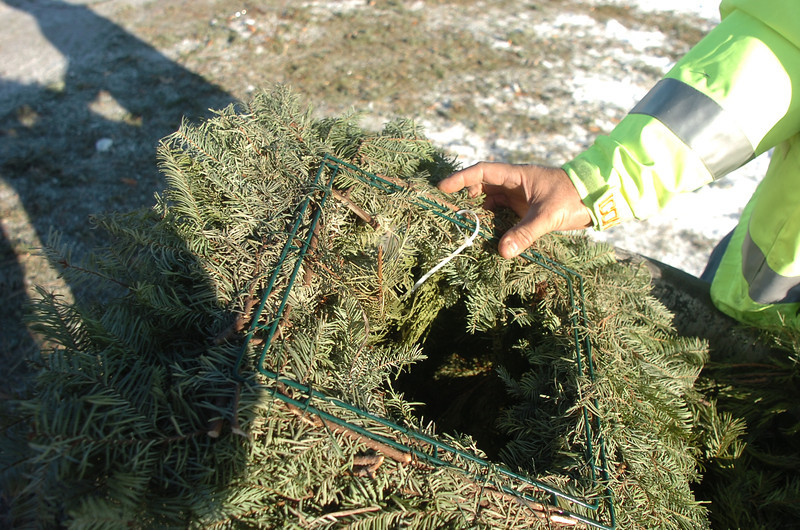A square wreath found at the tree drop off area in Community Park on Thursday, can not be recycled because of the wire frame.<br /> January 12, 2012<br /> staff photo/ David R. Jennings