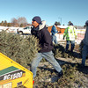 Ricky Newton, left, Broomfield Parks, shoves a Christmas tree into the wood chipper at the tree collection site in Community Park on Thursday. The parks crew chipped 92 trees at Community Park.<br /> <br /> January 12, 2012<br /> staff photo/ David R. Jennings