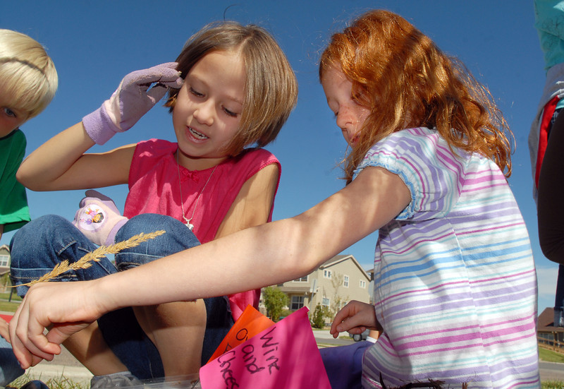 Gigi Tedesco, left, and Kera Bensky, Meridian Elementary first graders, put bone meal in a hole while planting some of the more than 500 tulips of four different varieties at the school on Friday. <br /> October 8, 2010<br /> staff photo/David R. Jennings