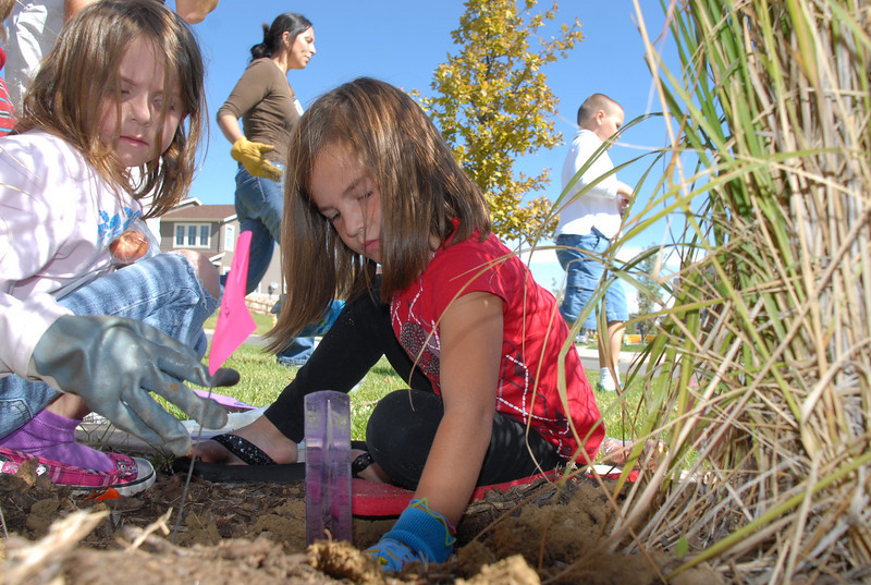 Meridian Elementary first graders Alyssa Otterson, left, and Delaney Rutligiano plant some of the more than 500 tulips of four different varieties at the school on Friday. <br /> October 8, 2010<br /> staff photo/David R. Jennings