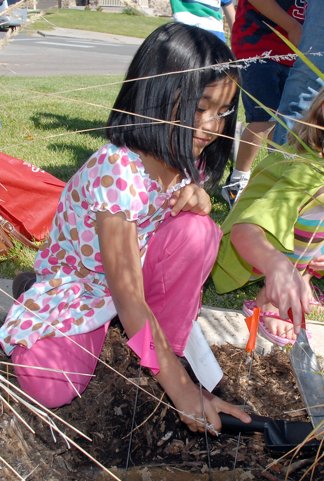 Meridian Elementary first grader Leena Maharajh works on digging a hole for tulip bulbs at the school on Friday. <br /> October 8, 2010<br /> staff photo/David R. Jennings