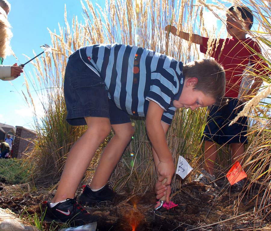 Meridian Elementary first grader Trenton Bowers works on digging a hole while helping plant some of the more than 500 tulips for the Journey North program at the school on Friday. <br /> October 8, 2010<br /> staff photo/David R. Jennings