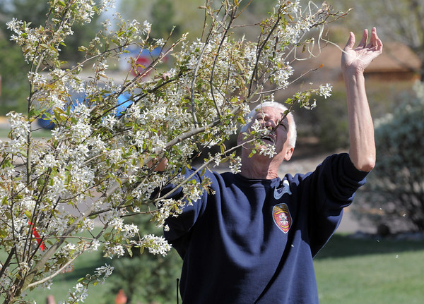 "North Metro Fire Rescue Battalion Chief Bruce Gunter takes twin off of a tree being planted in the area between North Metro Fire Rescue headquarters and Mamie Doud Eisenhower Public LIbrary during the ""Trees for a Healthy Community and Economy"" event on Saturday. <br /> <br /> April 14, 2012 <br /> staff photo/ David R. Jennings"