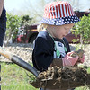 "Isabella Peterson, 3, tries to break up a piece of clay to help cover a tree planted in the area between North Metro Fire Rescue headquarters and Mamie Doud Eisenhower Public LIbrary during the ""Trees for a Healthy Community and Economy"" event on Saturday. <br /> <br /> <br /> April 14, 2012 <br /> staff photo/ David R. Jennings"