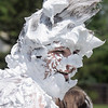 Mark Thomason, director of the Totus Tuus program, is covered in shaving cream by students during the water fight marking the last day of the program at Nativity of Our Lord Church and School with water from the air supplied by North Metro Fire Rescue on Friday.<br /> June 17, 2011<br /> staff photo/David R. Jennings