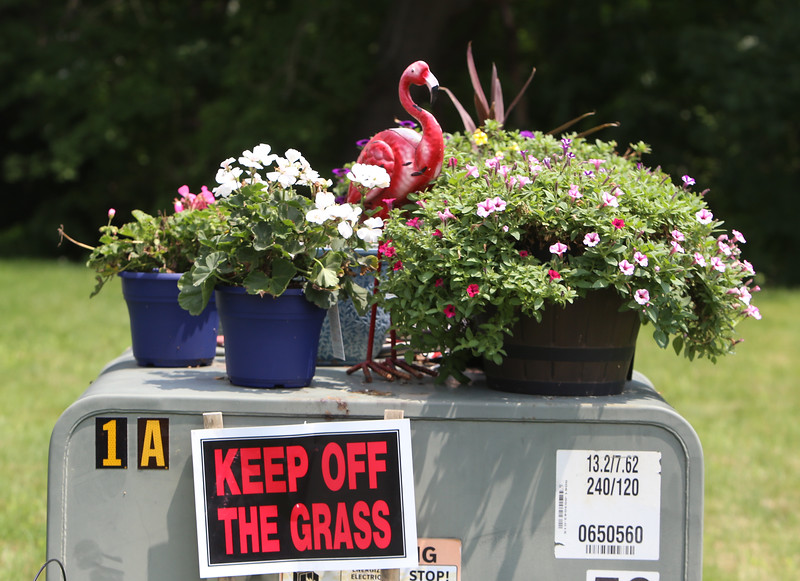 JUly 21, 2021 -- River's Edge on the Concord, in Lowell, where construction of single family and duplex houses began in 2006. Electric box decorated with flowers and a pink flamingo, on Eclund Drive. SUN/Julia Malakie