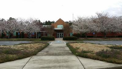 Summit Hill Elem School (14)
