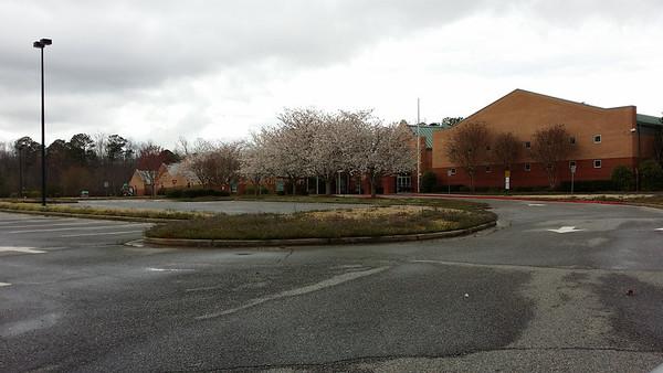 Summit Hill Elem School (6)