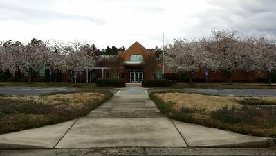 Summit Hill Elem School (10)