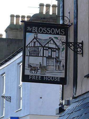 Pub Sign - The Blossoms, Kingsland Road, Holyhead 101121