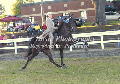 CLASS 27A  -  3 YR OLD MARES & GELDINGS  AMATEUR